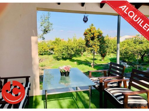 Alquiler casa con terreno en Murcia zona Paseo del Malecon